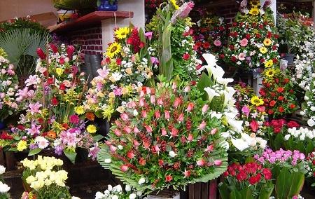 bouquets flores