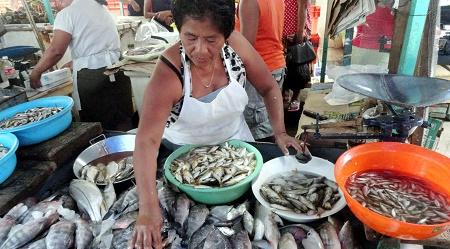 venta de pescados